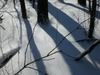 Last_snow_linda_034_3