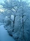 Wintersblue